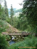 091 - Germania - foresta nera - triberg parco.jpg