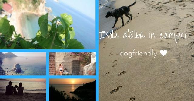 isola elba camper dogfriendly 1
