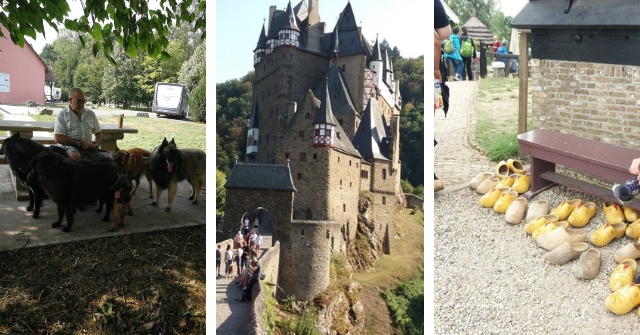 tour estate 2018 aleiva