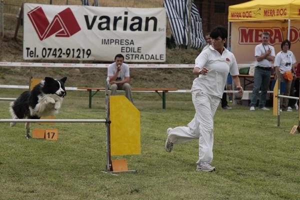 addestramento cani da tartufo perugia italy - photo#42